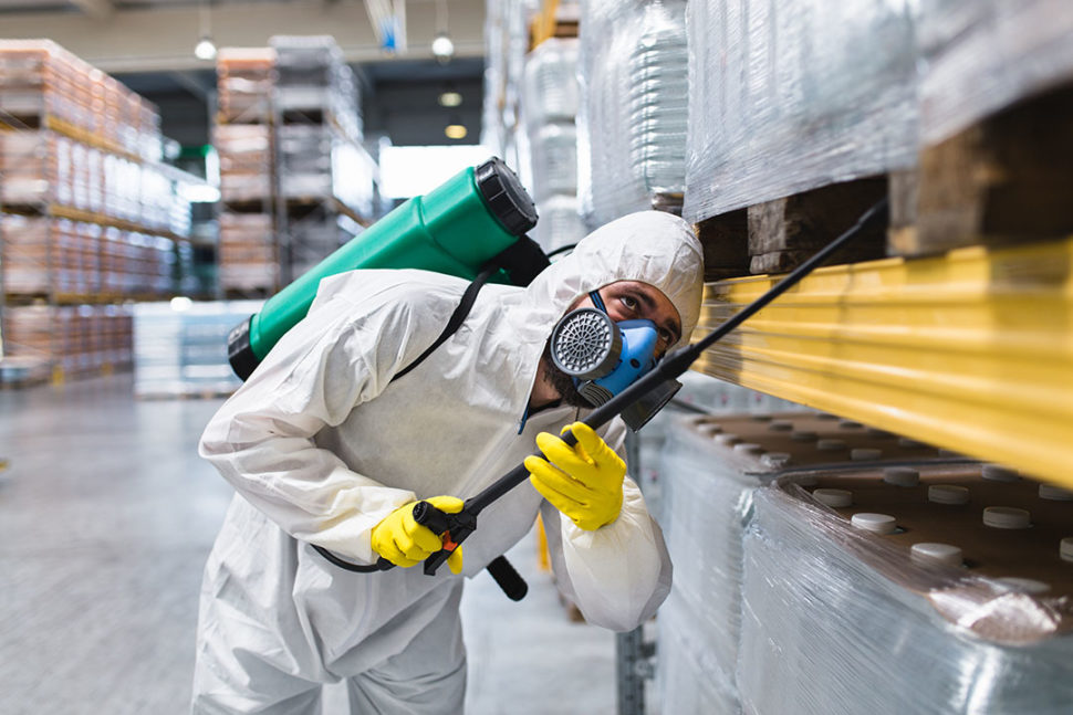 Pest Control in Food Facility