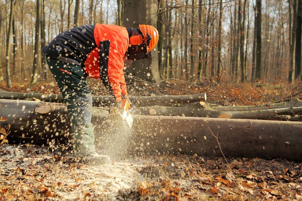 Employee Practicing Chainsaw Safety