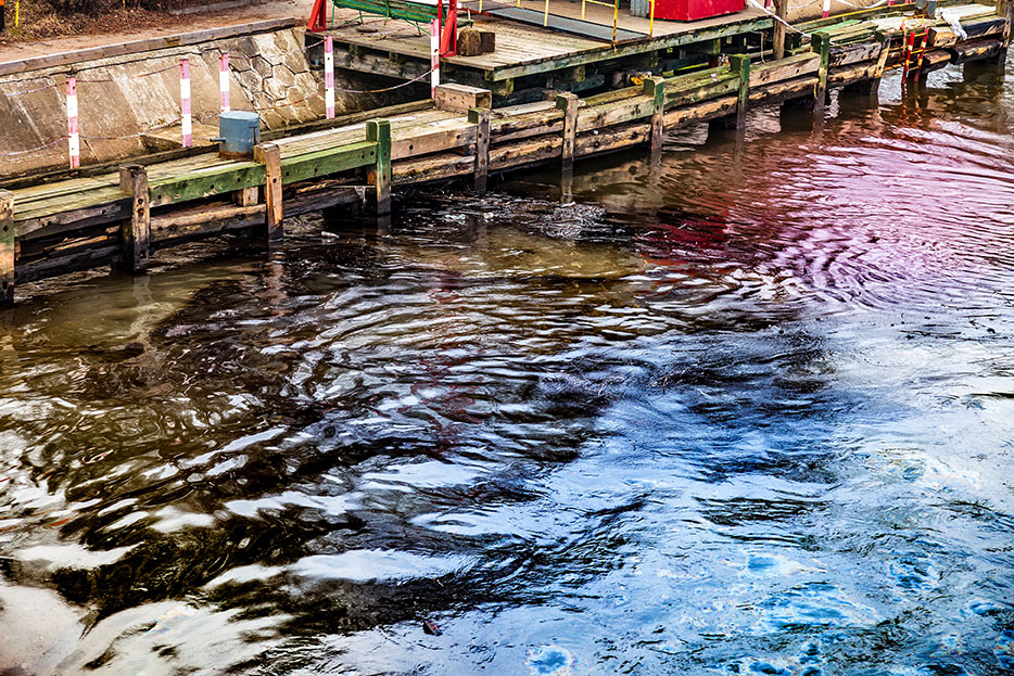 Water pollution caused by oil spill